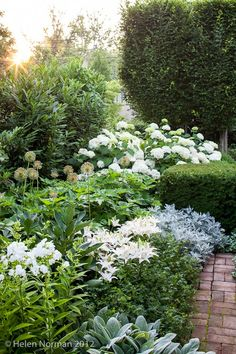 showstopping display of white daisies, hydrangeas, irises, lilies and phlox
