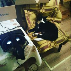 An awesome Virtual Reality pic! Put Oculus on and let me sleep! :) #immersion #virtualreality #architecture #design #interior #virtualrealityworld #vr #technology #rift #cat #oculusrift #oculus #virtual #innovation #home #3d #model #wizualizacje #design3d #aranżacja #rendering #exterior #instahome #instadesign #instadecor #decor #interiordesign #Lodz #architektura #wizualizacja by inplannervr check us out: http://bit.ly/1KyLetq