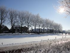 Winter at Reeuwijk