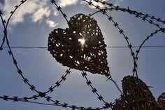 Srdce, Bezpečnostní Plot