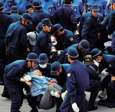 Tokyo riot police join security at Camp Schwab,Okinawa; protester arrested in scuffle(11/5/2015,Ryukyu Shimpo) At 6:55 a.m. on November 4, in front of Camp Schwab, riot police officers remove citizens who were protesting construction of the new base. (Photograph taken by Futoshi Hanashiro)