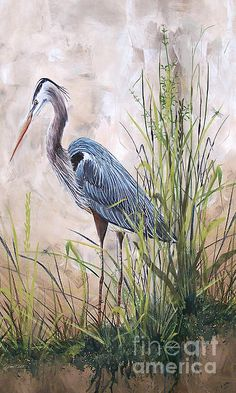 'In the Reeds-Blue Heron-B' - http://plout-gallery.artistwebsites.com/featured/in-the-reeds-blue-heron-b-jean-plout.html via @fineartamerica