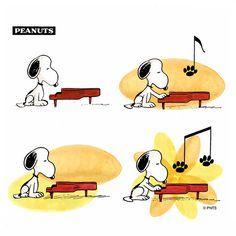 Snoopy plays a tune on the piano. Peanuts Gang, Peanuts Cartoon, Peanuts Comics, Music Jokes, Music Humor, Peanuts Characters, Cartoon Characters, Charlie Brown Und Snoopy, Hello Kitty Imagenes