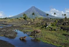 Volcano Island: Luzon's Unique Landscape