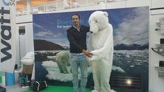 Ook volwassen mensen zijn fan van de ijsbeer!