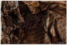 création Sandra Guillemot (détail), photo Yseult Lassée