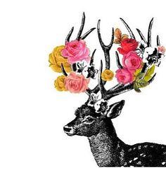 Weird deer overlay