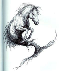 Seahorse by ~SMcNonnahs on deviantART