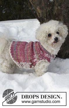 Free Pattern: Dog's vest Size XS - L.