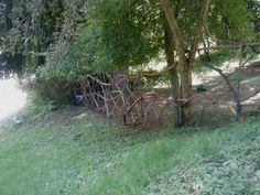 Whimsical fence that I built