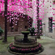 Girona - Temps de Flors 2014 - Flower Festival, Catalonia