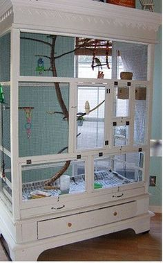The owner and creator of this armoire-turned-aviary didn't always keep such an elaborate home for her birds #aviariesdiy #howtobuildanaviary #buildaviary