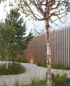 Landscape Walls, Landscape Design, Garden Design, Crow Images, Old Hospital, Cement Garden, Primroses, Cancer Support, New Forest