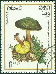 Laos Stamp 1985