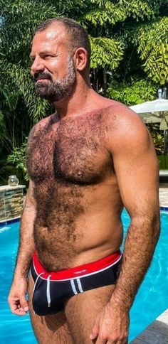 Hairy Hunks, Hairy Men, Bearded Men, Muscle Bear Men, Man Gear, Guys In Speedos, Muscular Men, Hairy Chest, Mature Men