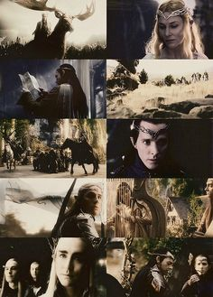 """""""And Elves, sir! Elves here, and Elves there! Some like kings, terrible and splendid; and some as merry as children."""" ~ Sam. Many Meetings. The Lord of the Rings"""