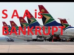 South African Airways is bankrupt! New Politics, South Africa, Bee, African, Amazing, Honey Bees, Bees