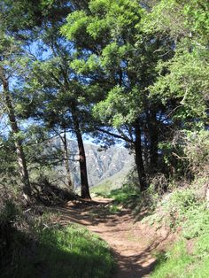 Buena Vista Trail, Santa Barbara CA with SB Adventure Company.