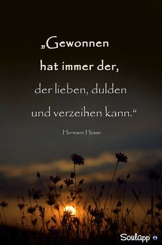 So sehr man es auch versucht zu wollen!… There are things you can not forgive. Words Quotes, Life Quotes, Sayings, Positive Thoughts, Deep Thoughts, Hermann Hesse, German Words, Philosophy Quotes, True Words