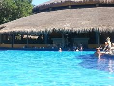 RIU Tequila hotel, swim up bar    Mexico