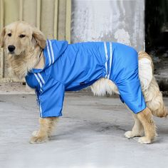 Pet Dog Hooded Raincoat for Medium to Large Dogs, Dog Waterproof Jacket/ Rain Slicker/ Rain Poncho for Golden Retriever,Springer Spaniel Breeds Go4direction Blue 5XL -- Startling review available here  : Dog coats