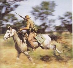 The South African Defence Force (SADF) made effective use of the horse mounted soldier in the 'Border War'. Photo Copyright Jacques J. de Vries and Sandra . Military Life, Military History, Military Gear, Man Of War, Defence Force, Military Photos, Historical Pictures, African History, Armed Forces