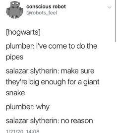 Harry Potter Jokes, Harry Potter Fandom, Harry Potter World, Stupid Funny Memes, Hilarious, Funniest Memes, Yer A Wizard Harry, Dc Memes, Harry Potter Universal
