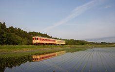 写真ギャラリー | ひたちなか海浜鉄道株式会社
