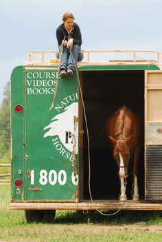 Equine & Science - For equine professionals - Trailering problems in horses Horse Training Tips, Natural Horsemanship, Old Faithful, Horse Trailers, Horse Care, Show Horses, Dressage, Beautiful Horses, Equestrian