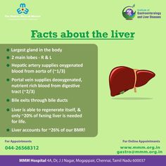 The liver produces proteins that are important in blood clotting. Here are 7 facts about this underappreciated, hardworking organ. For Appointment's call 044 2656 8312 Social Organization, Bile Duct, Gastroenterology, Liver Disease, Cardiology, How To Stay Healthy, Surgery, Health Care, Blood