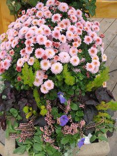 """Der Ein- und Ausgang zum Wasser-Boot-Gelände ist mit solch' hübschen Blumen-Arrangements dekoriert ... seltene """"echte"""" Blumen auf dem Oktoberfest ..."""