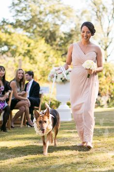 Anna and Spencer Photography , Atlanta Wedding Photographers . Bridesmaid walking down the aisle with the Flower Dog . Church Wedding Ceremony, Chapel Wedding, Dog Wedding, Wedding Shoot, Wedding Ideas, Atlanta Botanical Garden, Botanical Gardens, Flower Dog, Fine Art Wedding Photography