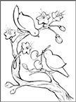 Cherry Branch Love Birds A Page From Our Coloring Book Color Fun