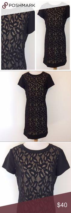 "White House Black Market Black Lace Dress Beautiful White House Black Market Short Sleeved Black Lace dress with nude underlay. Size 8. Underarm measurement is 19.5"". Waist is 16.5"". Length is 35 1/4"". White House Black Market Dresses"