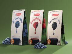 Ekströms (Student Work) on Packaging of the World - Creative Package Design Gallery