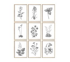 Black and White Art Print SET of 9 black and by curiousgallery