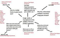 M.E./CFS/Fibromyalgia/Lyme/ Autism/GWS: Post-Sepsis Syndrome | BLAB: The Bad [Lyme] Attitude Blog