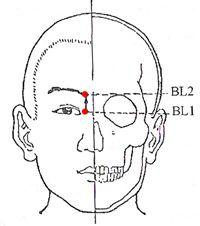 Bladder Meridian Acupuncture Points