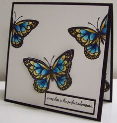 Stamping with Loll: Butterflies in Flight