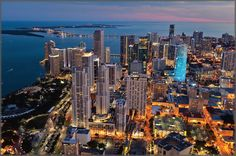 Drive through Miami in a prestigious luxury car from Apex and show off