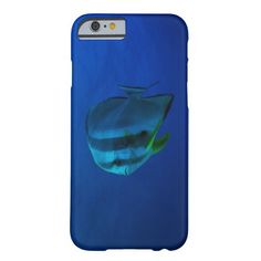 This beautiful iPhone 6 features an amazing batfish swimming in the clear blue waters of the Coral Sea on Australia's Great Barrier Reef.