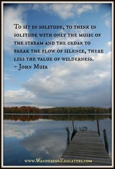 To sit in solitude, to think in solitude with only the music of the stream and the cedar to break the flow of silence, there lies the value of wilderness. ~ John Muir