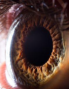 Extreme close-ups of human eyes by Suren Manvelyan