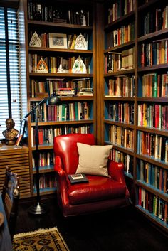 Love this library and chair. In an apartment in NYC in the Beresford building.