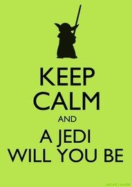 My familia loves Star Wars.  This is perfect!