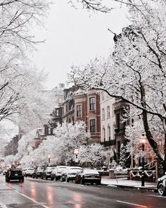 snowy new york