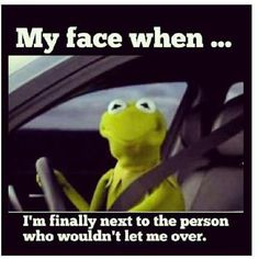 Exactly! And the person who driving 10 miles under the speed limit and can't stay in own lane because they are texting!