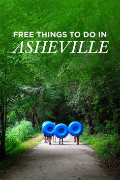 Heading to Asheville on a budget? Here are 25 free things to do in Asheville NC // http://localadventurer.com