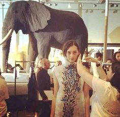 O backstage improvisado em meio aos animais  (Foto: Reprodução/ Instagram) Vogue Brazil #EIFF Vogue India, Vogue Russia, Vogue Brazil, Tim Walker, International Fashion, Festival Fashion, Glamour, Daddy, Elephant