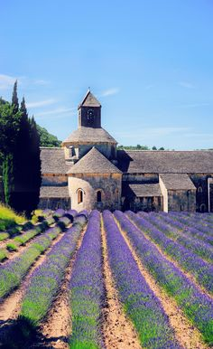 Even if you have never been to Provence, this colorful part of France can conjure images of lavender La Provence France, Provence Style, Provance France, Oh The Places You'll Go, Places To Travel, Places To Visit, Travel Destinations, Travel Tips, France Photography